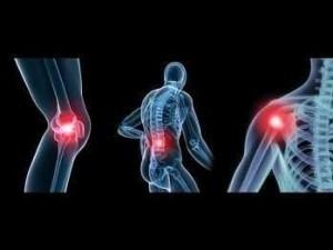 flexa plus per i problemi con le articolazioni