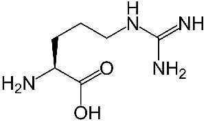 l-arginin - sestavina dodatek drivelan