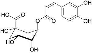 klorogénsav cga800