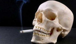 nicofrin fumare