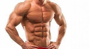 Silhouette muscolare