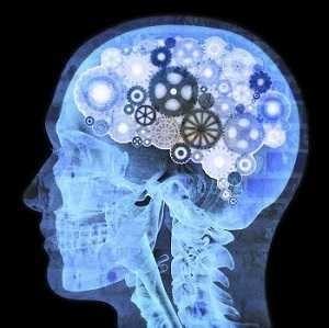 Die Vorteile der Verwendung von revitalum mind plus