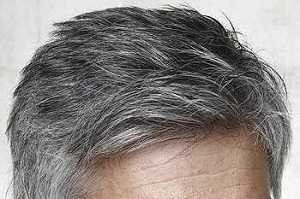 Grey Blocker para el pelo gris