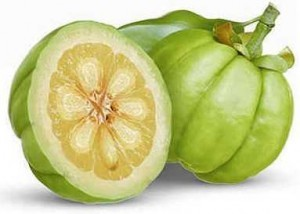 garcinia cambogia ingredient Kankusta Duo